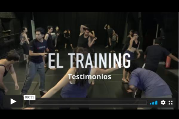 TESTIMONIOS SOBRE EL TRAINING
